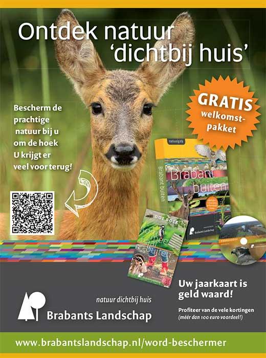 Brabants Landschap-Bootcamp Tilburg Oisterwijk